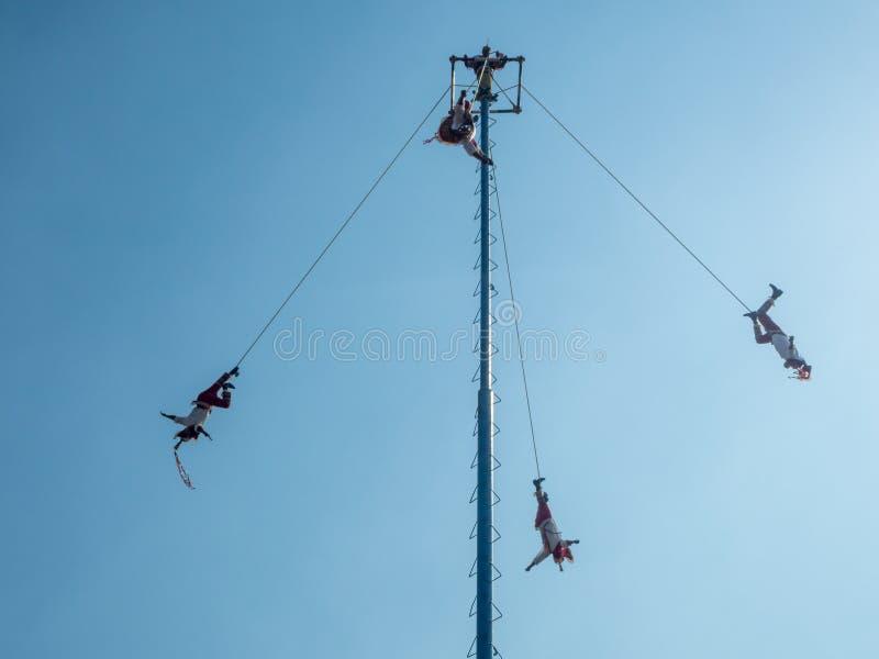 Danza de los Voladores Dansa av reklambladen, Palo Volador flygpol, ceremoni, ritual fotografering för bildbyråer