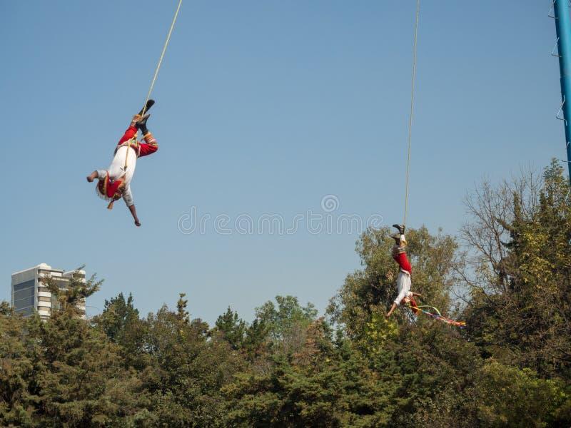 Danza de los Voladores Dansa av reklambladen, Palo Volador flygpol, ceremoni, ritual arkivbild