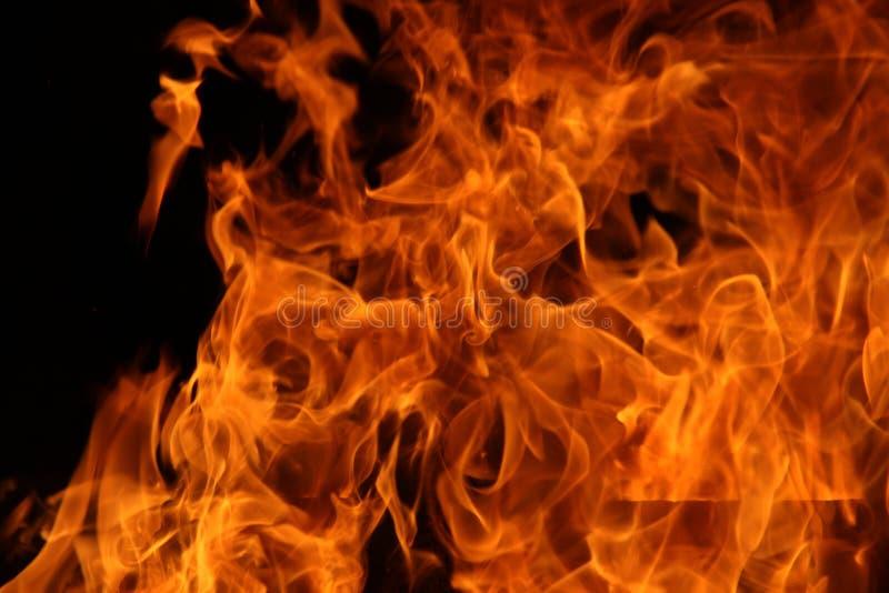 Danza del fuego del campo fotografía de archivo libre de regalías