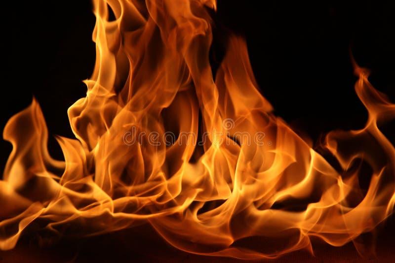 Danza del fuego del campo imágenes de archivo libres de regalías