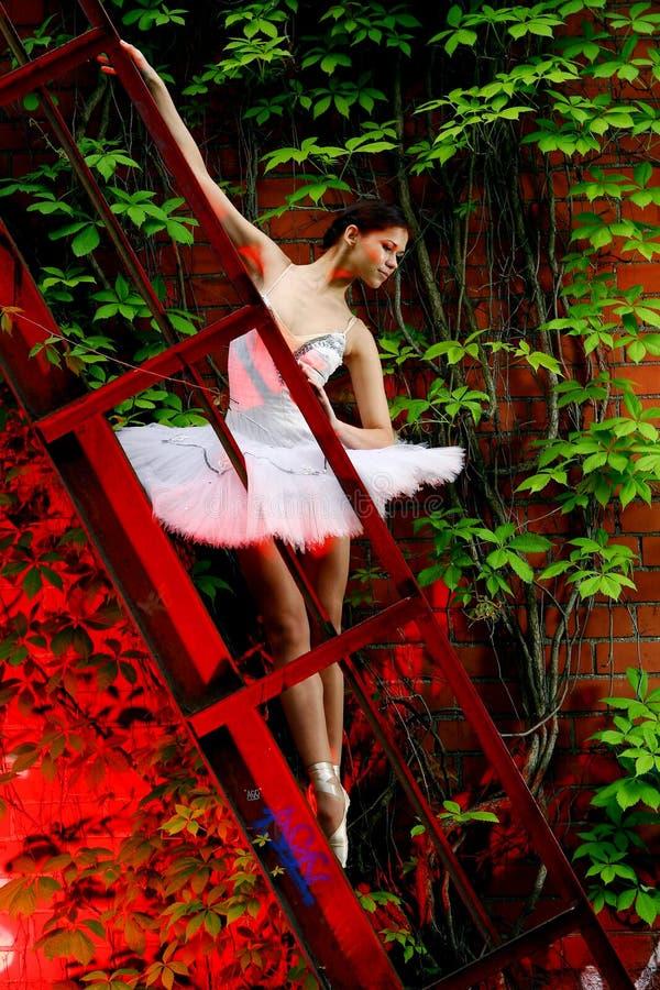 Danza hermosa del ballet del baile de la bailarina fotografía de archivo libre de regalías