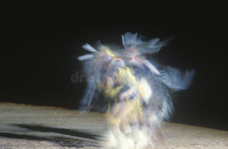 Danzatore dell'nativo americano nel movimento immagine stock