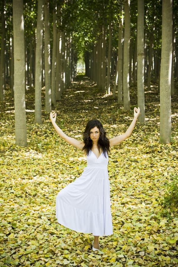 Danzatore nel legno fotografia stock libera da diritti