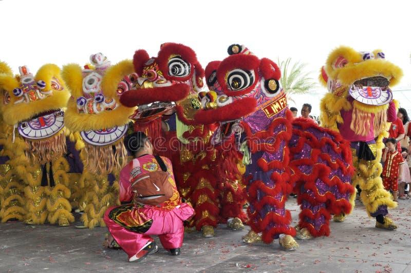 danze di leoni durante il Capodanno cinese a Seremban, Malesia immagine stock libera da diritti