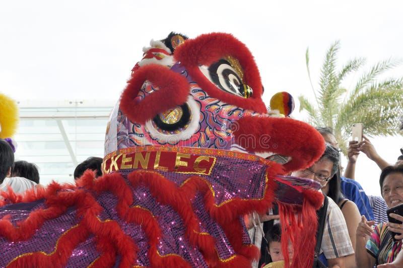 danze di leoni durante il Capodanno cinese a Seremban, Malesia fotografia stock