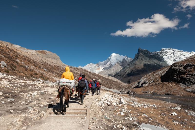 Daocheng, China - 23 Oct 2018: De toeristen backpacker zijn trekking en het berijden paard op rotsachtige piek royalty-vrije stock foto