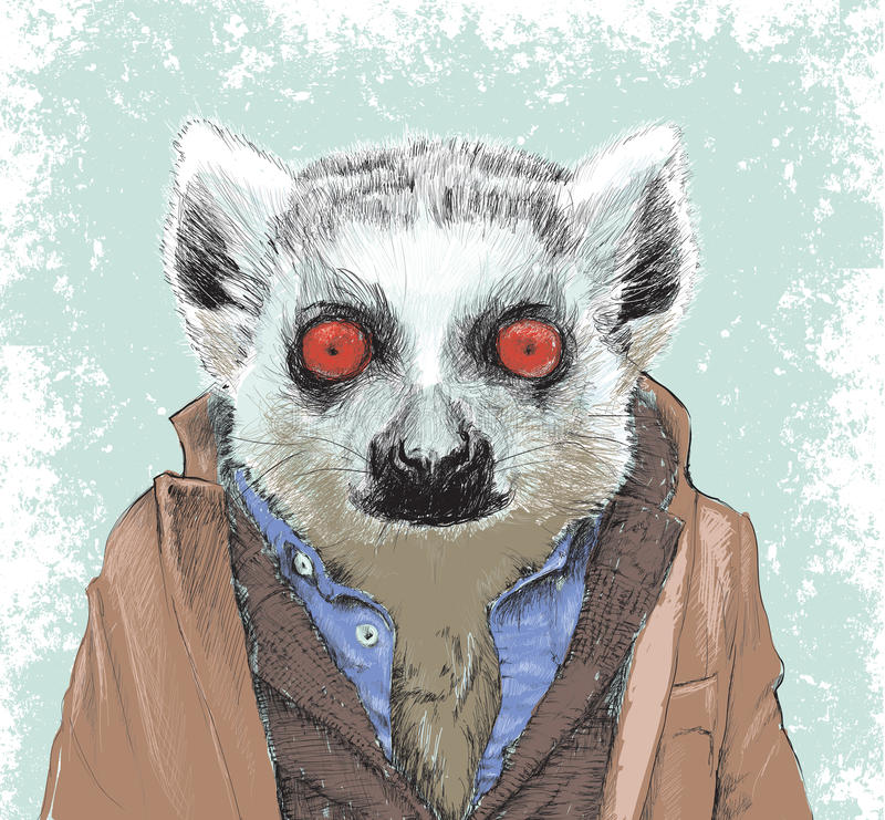 Dapper Lemur illustration. Highly detailed and hand drawn, this design is great for backgrounds, illustrations and apparel designs royalty free illustration