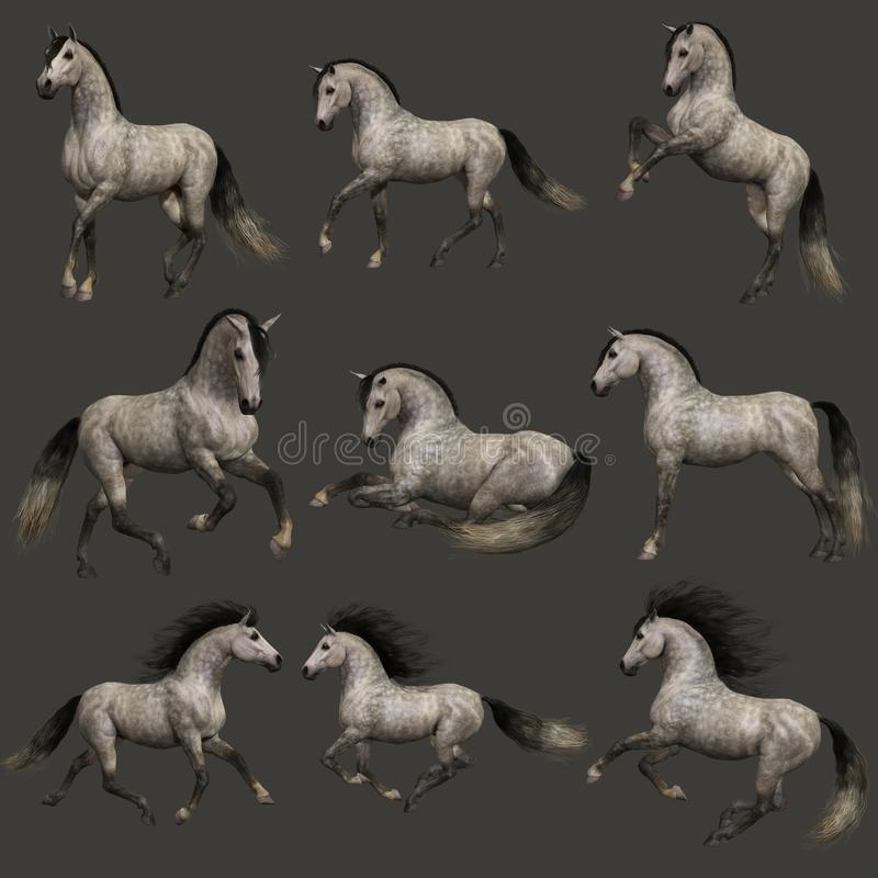 Dapple Grey Horse, 3d CG ilustração stock