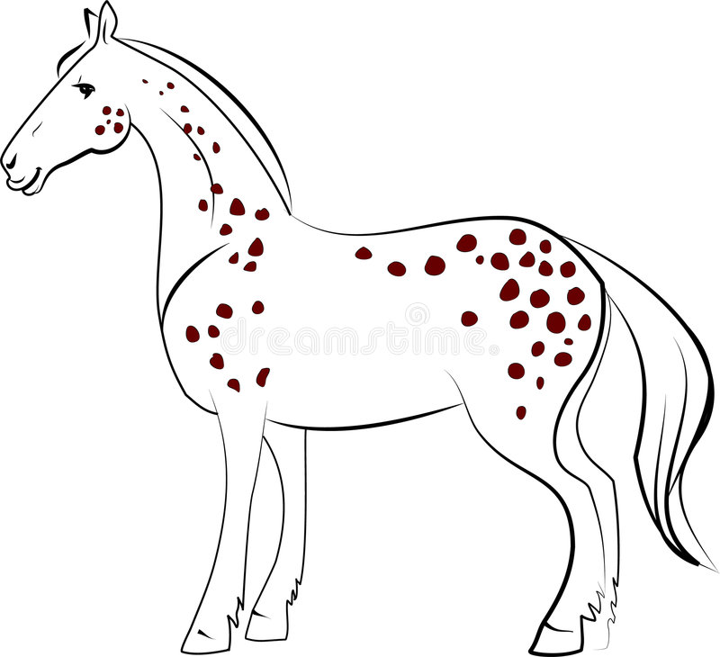 Download Dapple horse stock vector. Image of riding, grey, shire - 7738779