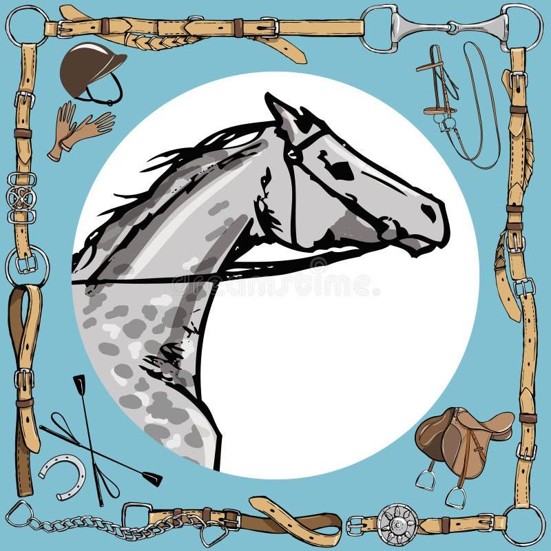 Dapple o focinho cinzento do cavalo no quadro da correia de couro Estilo inglês do esporte equestre com o chicote mordido das luv ilustração royalty free
