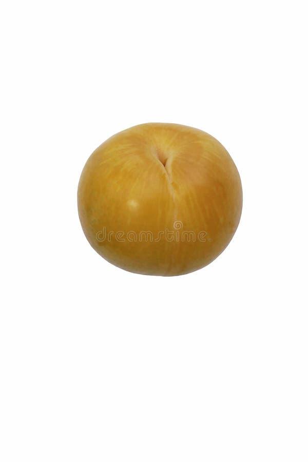 Dapple tidigt pluot Bild av frukt som isoleras på vit bakgrund fotografering för bildbyråer