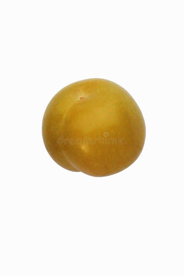 Dapple tidigt pluot Bild av frukt som isoleras på vit bakgrund arkivfoto