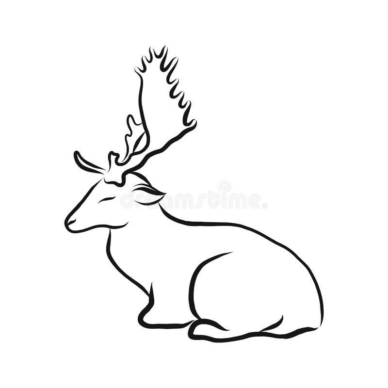 Dappled олени, черно-белая иллюстрация вектора эскиза doodle, чертеж руки вычерченный животный, изолированный на белизне иллюстрация штока