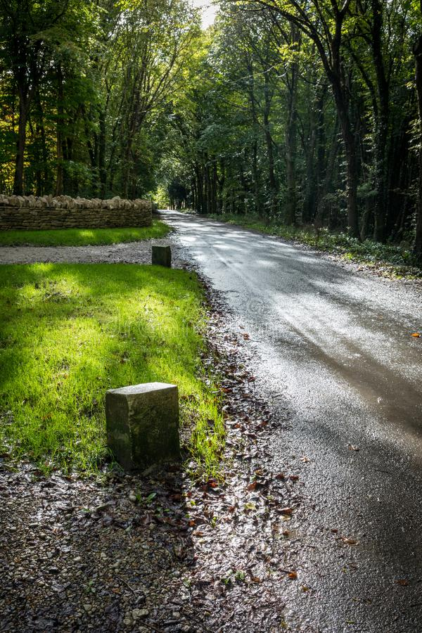 Dappled sun on road in woods. Dappled sun on road leading through woods with green grass verge and stone wall stock image