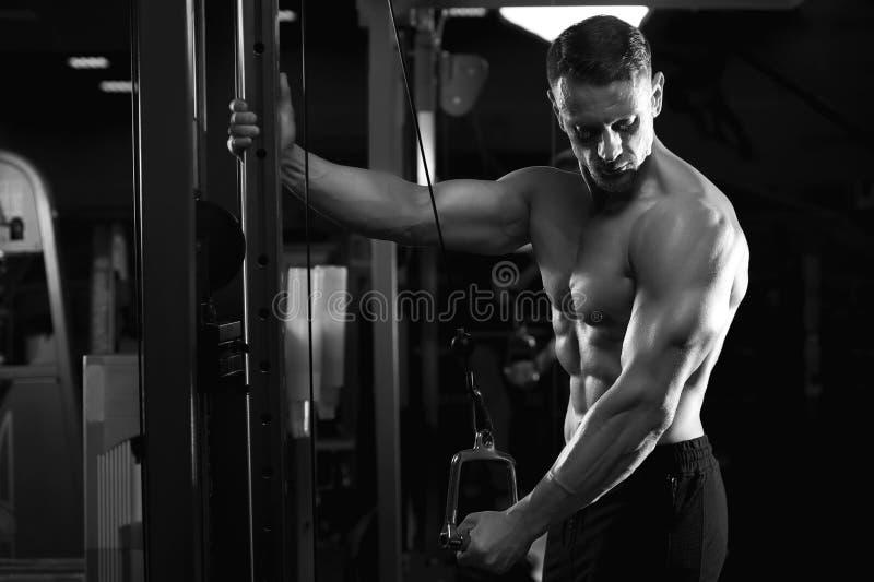 Dar certo modelo da aptidão masculina no gym imagens de stock