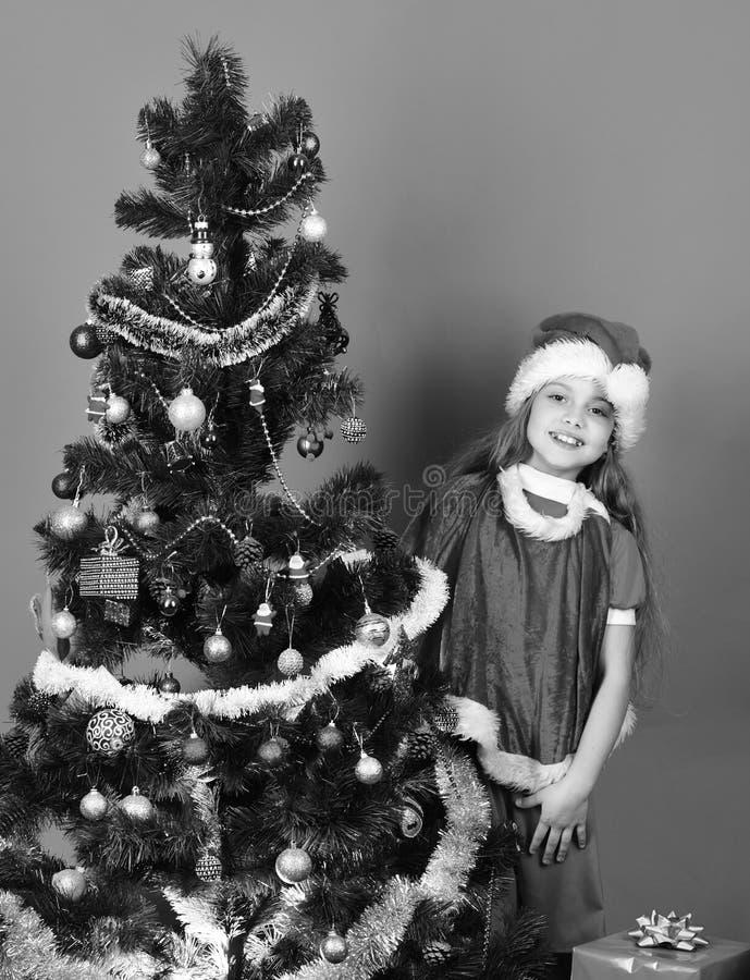 dar nowego roku Dziewczyna w xmas kapeluszowym pobliskim jedlinowym drzewie zdjęcia stock