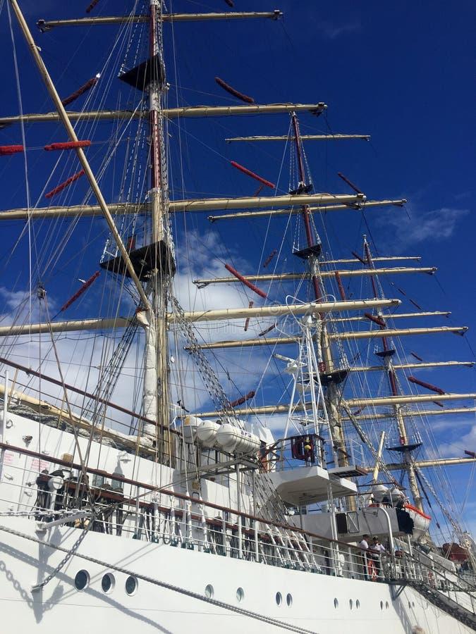 Dar Pomorza Tall Ship in Gdynia-Hafen lizenzfreies stockbild