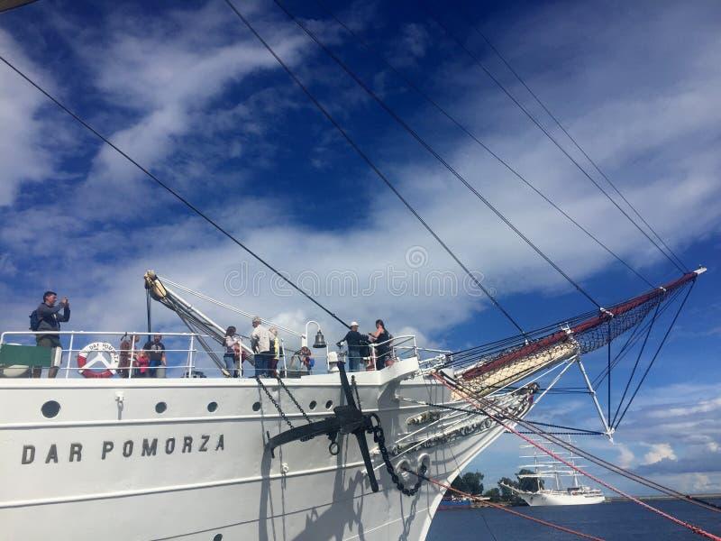 Dar Pomorza Tall Ship in Gdynia-Hafen lizenzfreies stockfoto