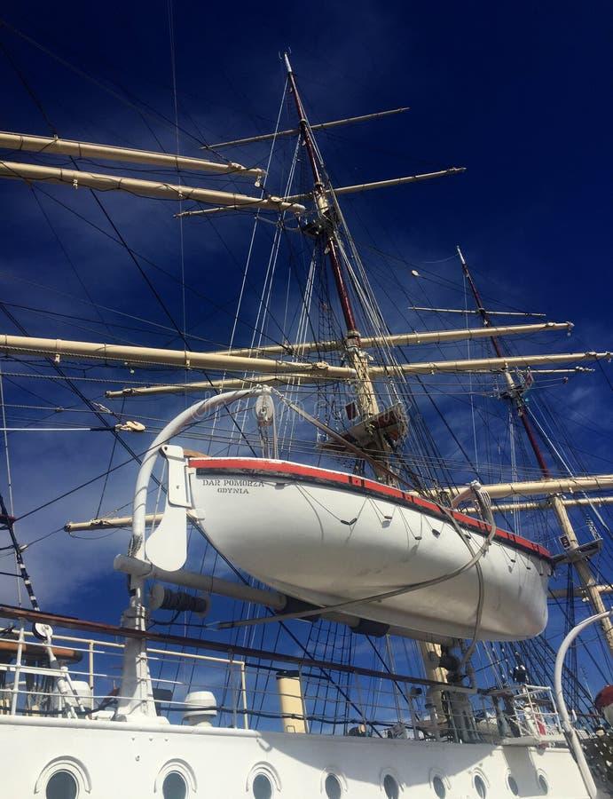 Dar Pomorza Tall Ship nel porto di Gdynia immagine stock