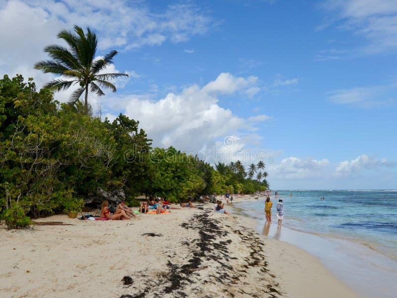 Dar uma volta na praia na ilha das Caraíbas fotos de stock royalty free