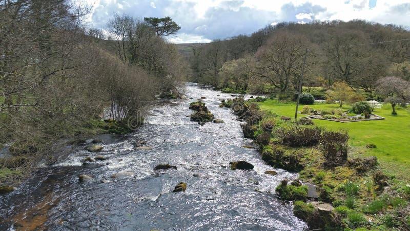 Dardo del río en el holt de los tejones en parque nacional del dartmoor Devon Reino Unido imagen de archivo
