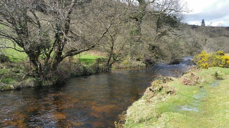 Dardo del río en parque nacional del dartmoor Devon Reino Unido imagenes de archivo