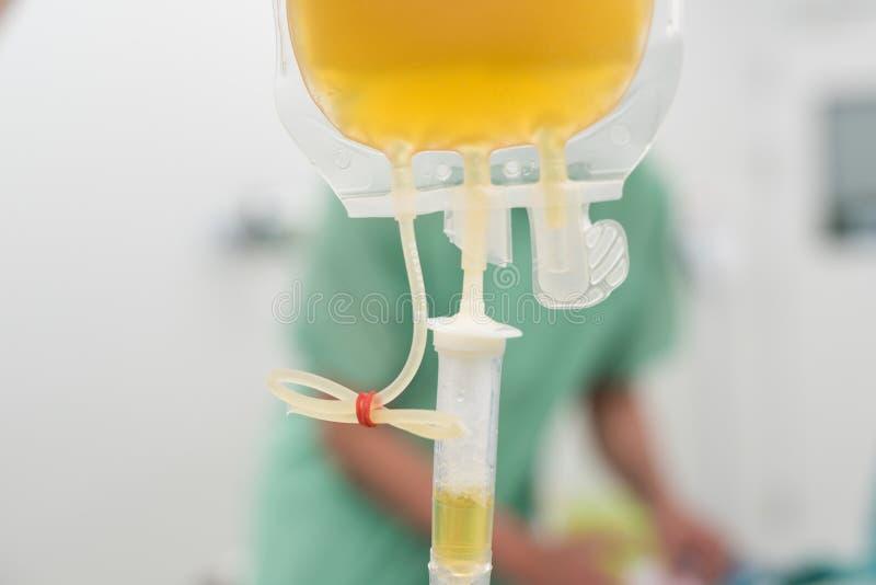 Dare le componenti del sangue congelate fresche del plasma durante la chirurgia immagini stock libere da diritti
