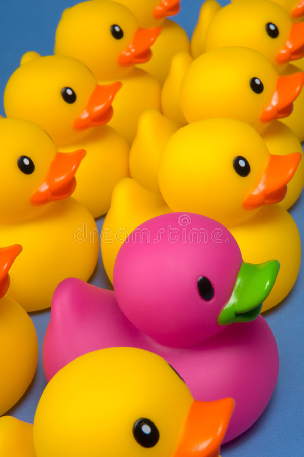 Free Dare To Be Different - Rubber Ducks On Blue Stock Images - 4534784