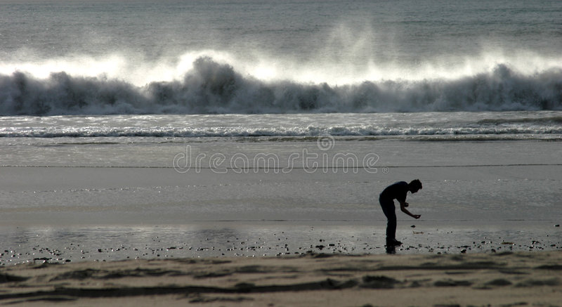 Download Dare to Dream stock image. Image of waves, power, beachcomber - 48601