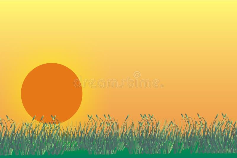 Dargestelltes grasland mit Sonnenaufgang stockbild
