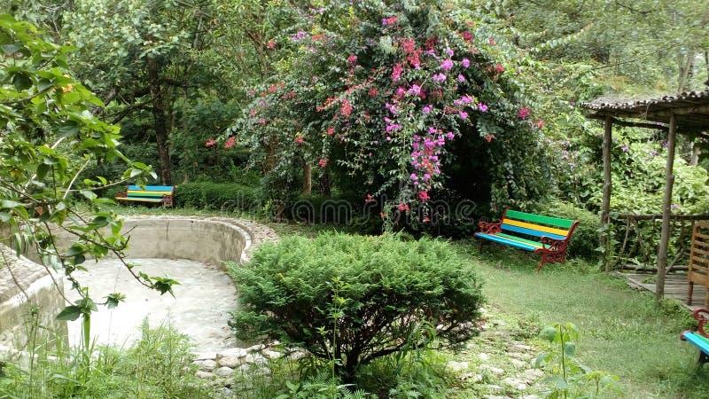Darjeeling at mineral spring stock photo