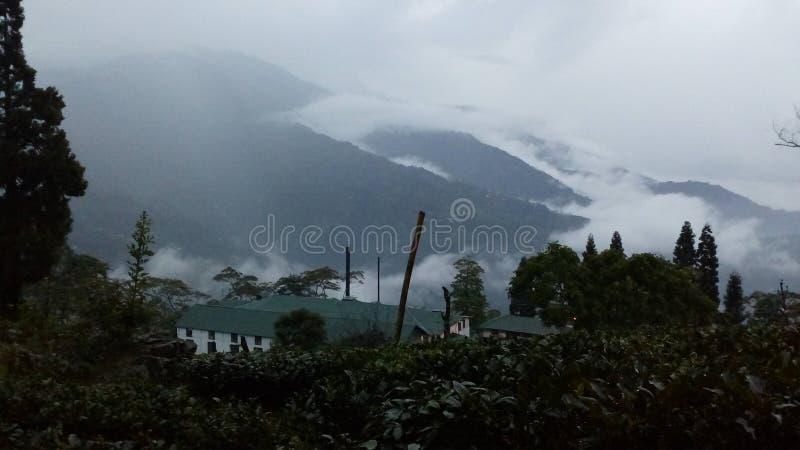 Darjeeling stock photos