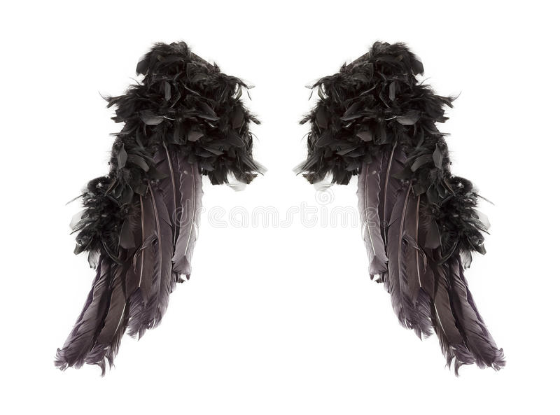 Dark angel wings. Isolated on white background royalty free illustration