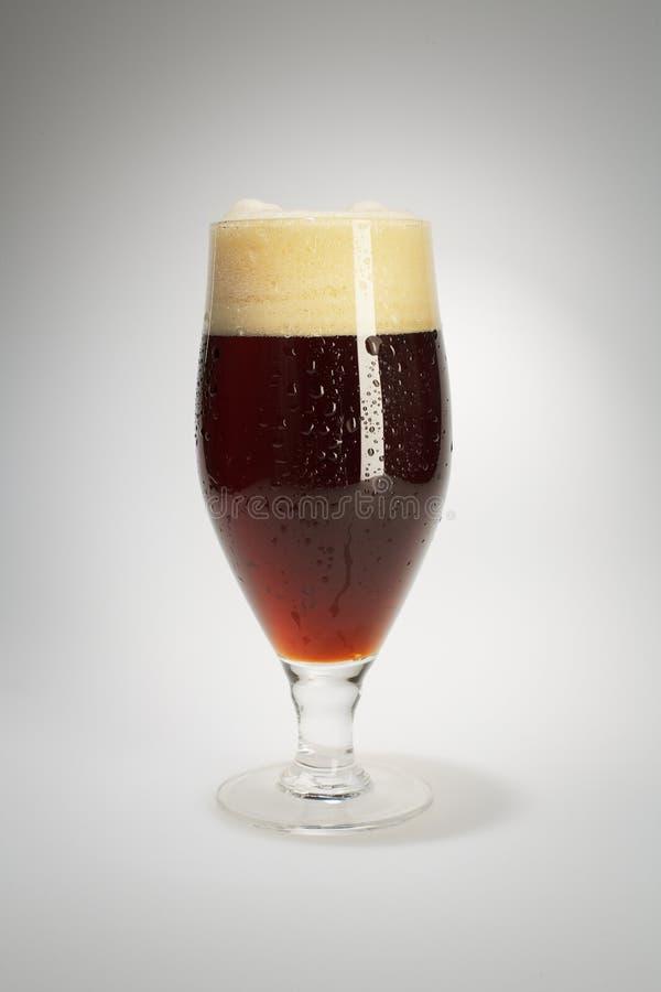 Download Dark beer stock image. Image of froth, nobody, dark, porter - 8566199