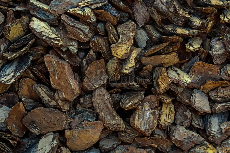 Dark brown bark oak eco background close-up pieces of wood decor mulch natural panel stock image