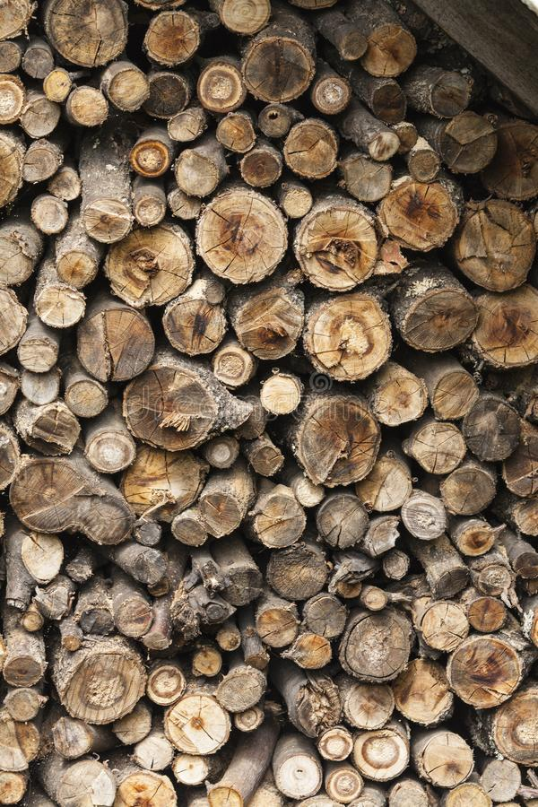 Cut dry firewood for fire, beautiful structure of old wood stock photo
