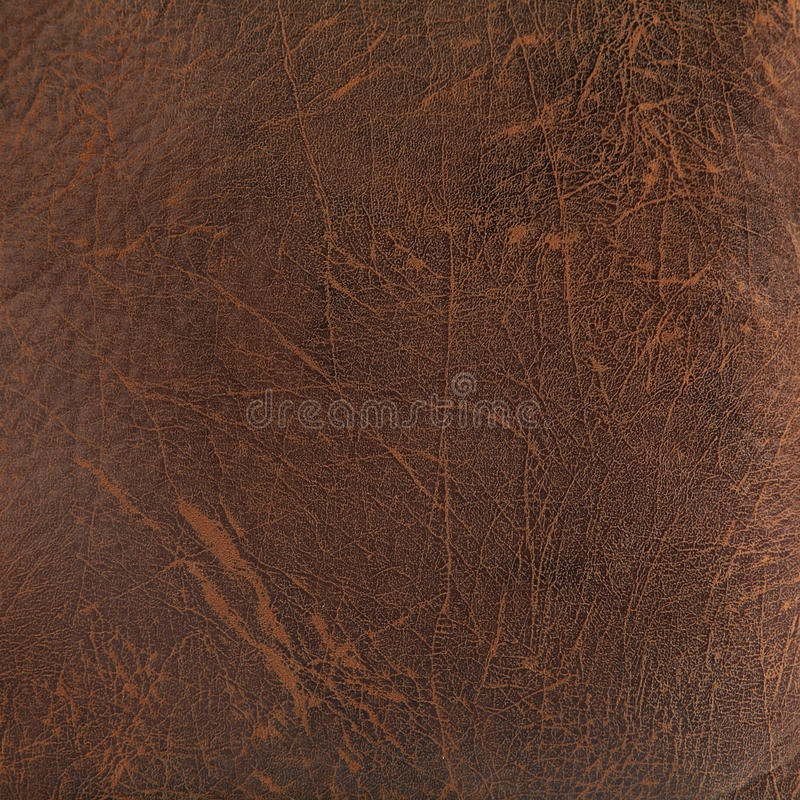 Download Dark brown leather texture stock illustration. Image of clothing - 33008780