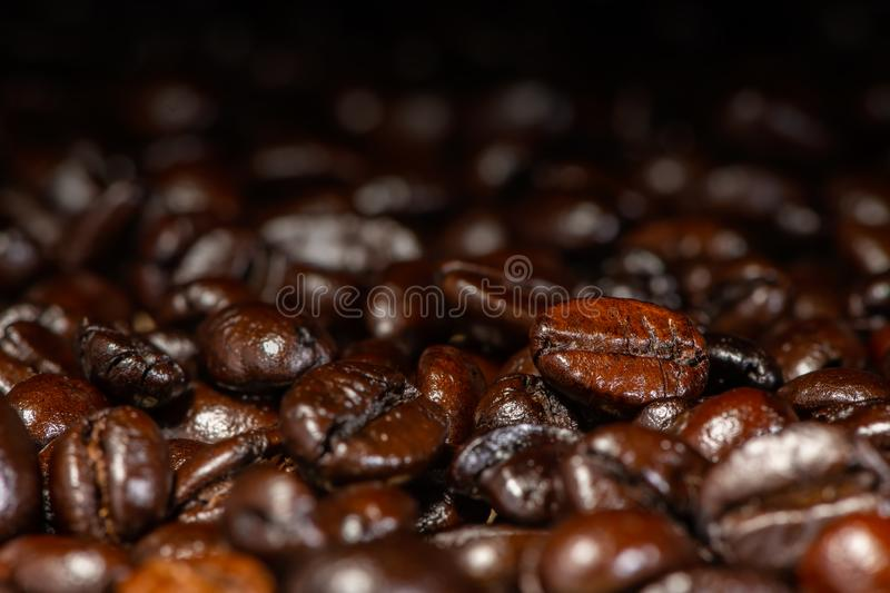Dark brown roasted coffee beans under artificial light for background stock photography