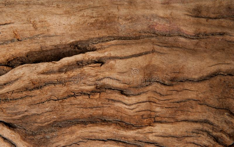 Brown wood texture background. Timber abstract background texture. Dark brown wood texture background. Wood abstract background texture with cracks and scratches royalty free stock photo