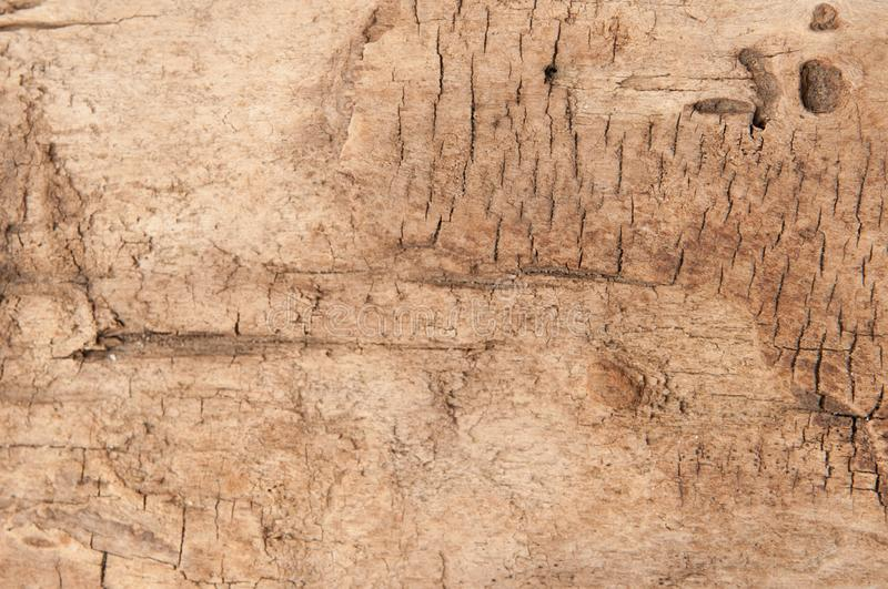 Brown wood texture background. Timber abstract background texture. Dark brown wood texture background. Wood abstract background texture with cracks and scratches stock photography