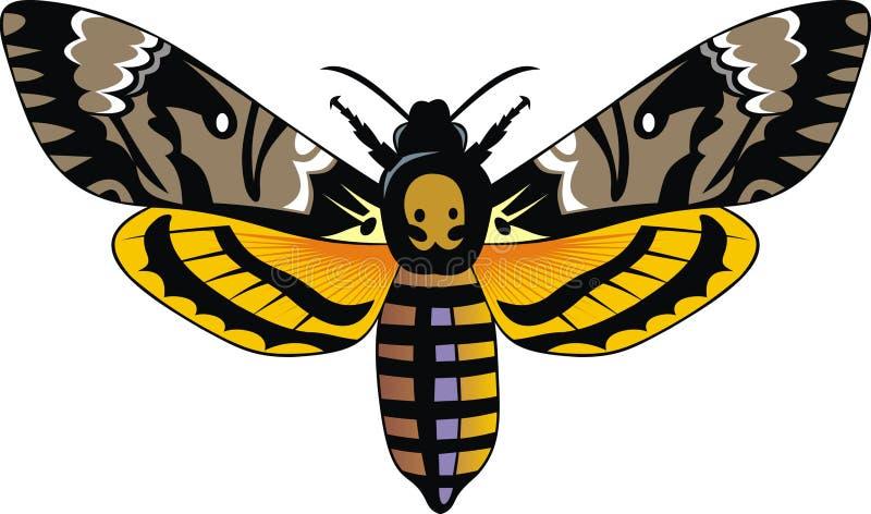 Dark butterfly vector illustration