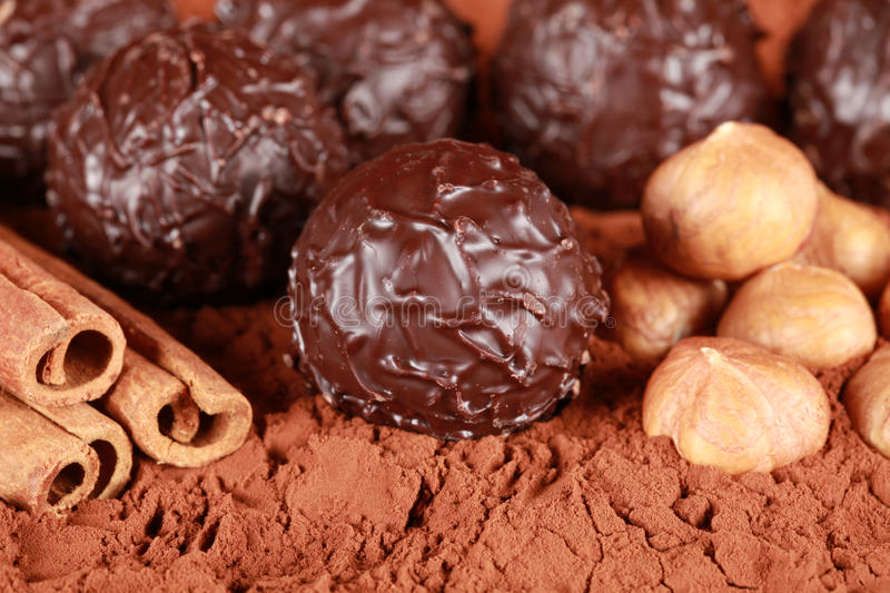 Dark Chocolate Pralines. Assorted dark chocolate pralines with hazelnuts, cocoa and cinnamon stock photo
