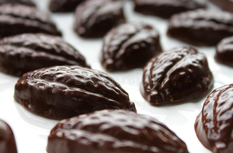 Dark chocolate pralines. Dark chocolate pralines, molded handmade bonbons, chocolates in cocoa bob shape royalty free stock photo