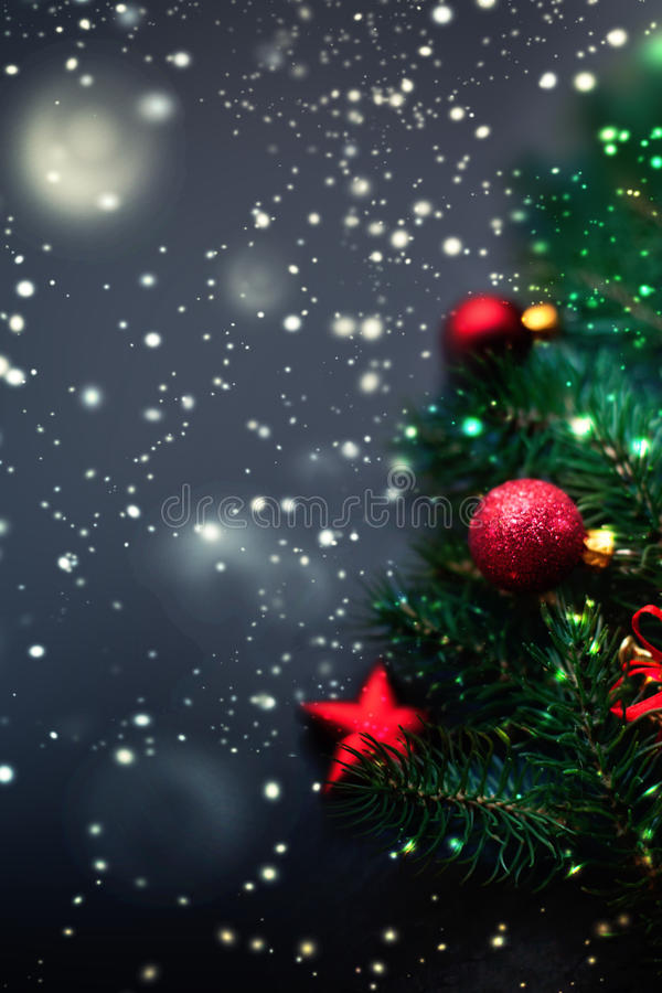 Dark Christmas decoration background - fir tree branches with re stock images