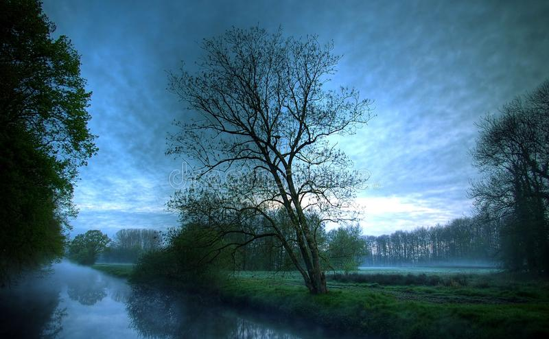 Dark Clouds Dead Tree& x27;s royalty free stock photography