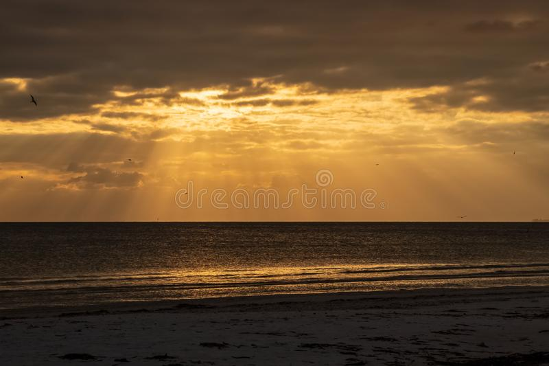 Dark cloudscape at sunset with sunbeams peaking through cloud clearing with view of bird silhouettes stock photo