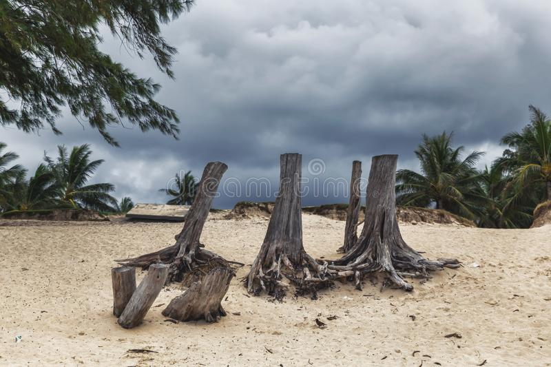 Dark cloudy sky during stormy weather on Kailua beach on Oahu island. Hawaii stock image