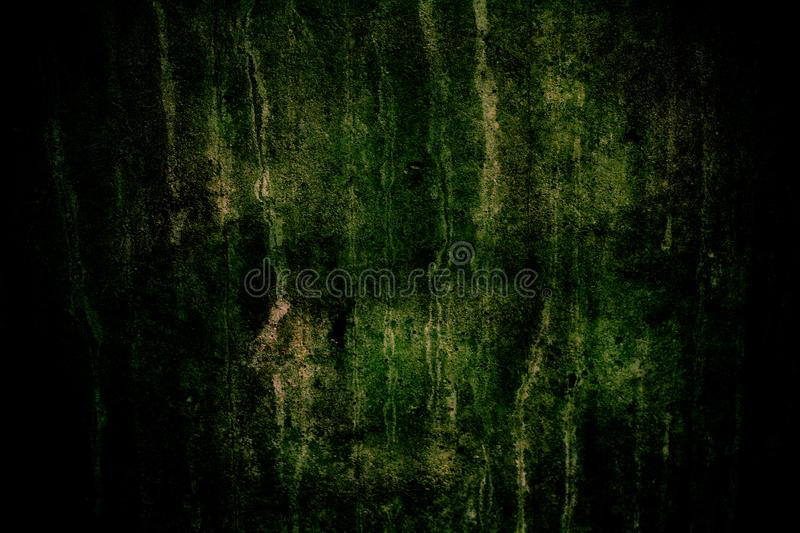 Dark concrete wall with green moss, imperfections and natural cement texture as background texture with dark vignetting stock photos