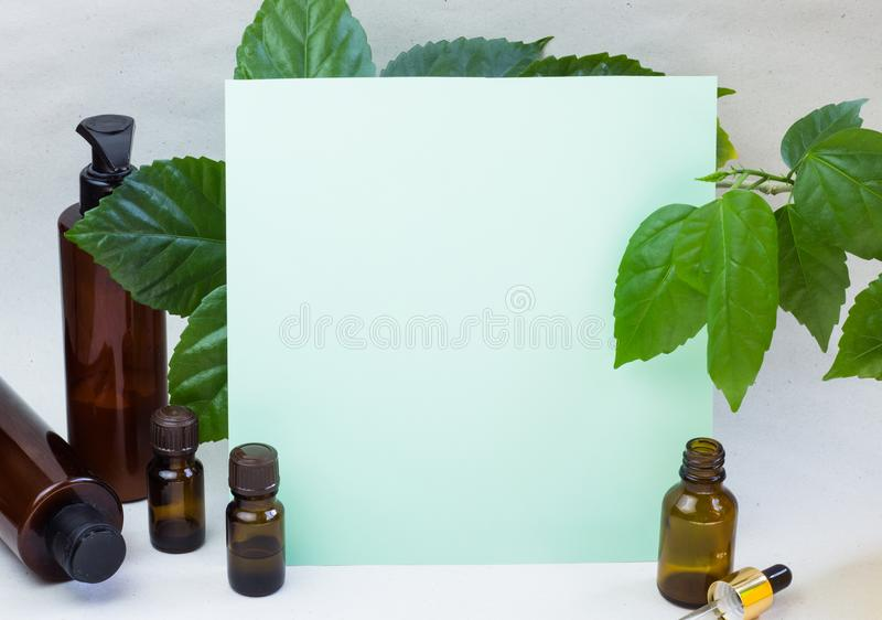 Dark cosmetic bottles and green natural leaves on a light background. Green empty card, sheet for writing. Layoutfor adding. Inscriptions. The concept of stock photos