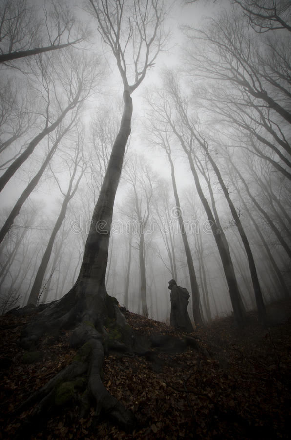Dark creepy man in forest with fog on Halloween stock photography